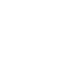 Drzwi zewnętrzne KARAT - biały INOX. Szklenie Stopsol. Produkt polski.