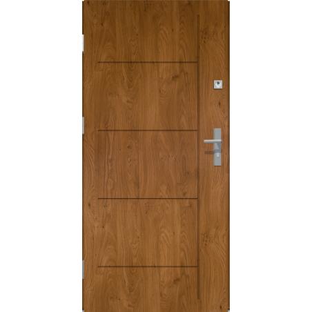 Drzwi zewnętrzne-pełne LINEA - Winchester. Produkt POLSKI.